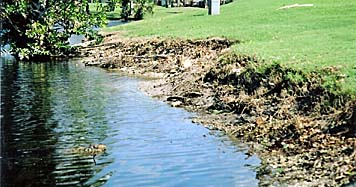 Georgia Golf Course Shoreline Restoration